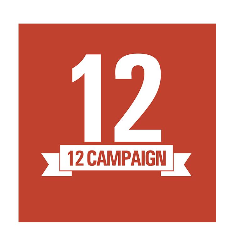 12 Campaign
